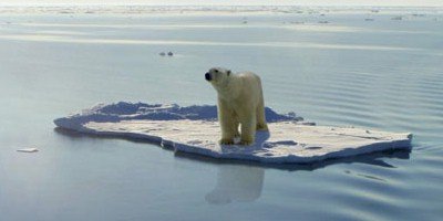 Global Temperature Sets Another Record